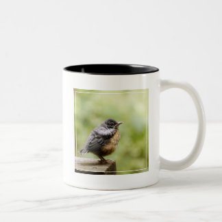 Young Robin Two-Tone Coffee Mug