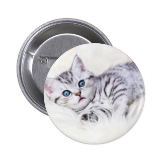 Young silver tabby spotted cat lying on sheep skin 6 cm round badge