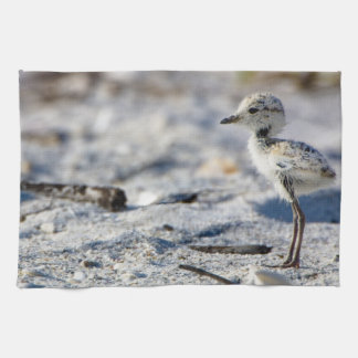 Young Snowy Plovers (Charadrius alexandrinus) Tea Towel