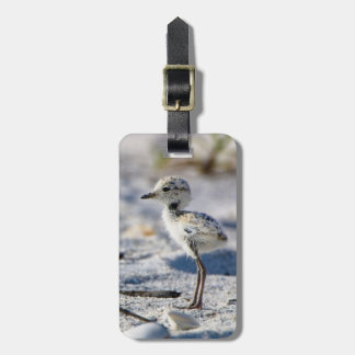 Young Snowy Plovers (Charadrius alexandrinus) Travel Bag Tag