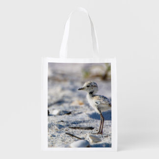 Young Snowy Plovers (Charadrius alexandrinus) Grocery Bags