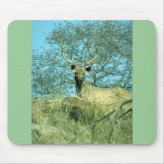 Young stag mousepads