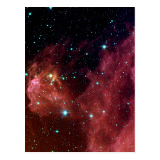 Young Stars Emerge from Orion's Head Postcard