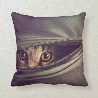 Young Tabby Kitten Looking Out From Zip Up Bag Cushion