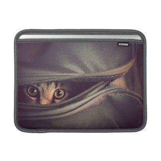 Young Tabby Kitten Looking Out From Zip Up Bag Sleeve For MacBook Air