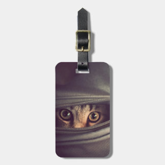 Young Tabby Kitten Luggage Tag