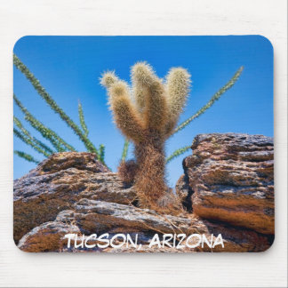 Young Teddy Bear Cholla Mouse Pad