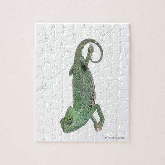 Young veiled chameleon, Chamaeleo calyptratus Jigsaw Puzzle