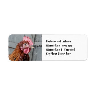 Young Welsummer Rooster Chicken Return Address Label