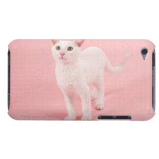 Young white cat 2 iPod Case-Mate cases