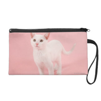 Young white cat 2 wristlet