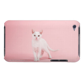 Young white cat iPod touch covers