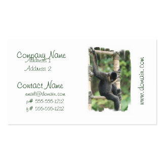 Young White Cheeked Capuchin Monkey Business Card