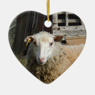 Young White Sheep on the Farm Ceramic Heart Decoration