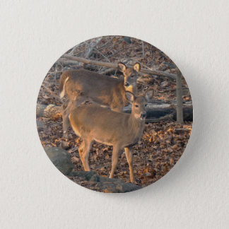 Young Whitetail Deer Series 6 Cm Round Badge