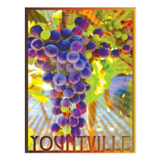 Yountville California Grape Cluster Postcard