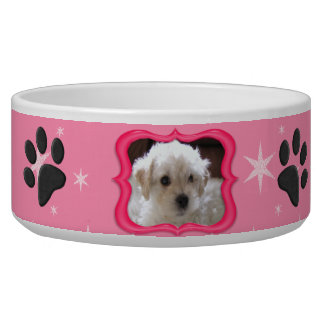 Your A Star Dog Dish - Customize Photo Pet Food Bowl