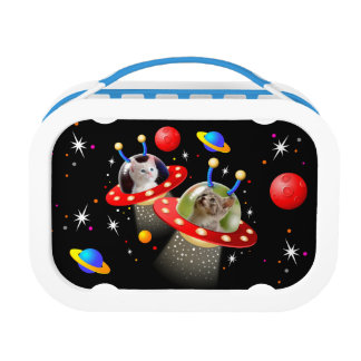 Your Cats in an Alien Spaceship UFO Sci Fi Scene Lunch Box