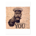 Your Country Needs YOU 3 Postcard