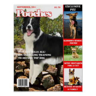 Your Dog on the Cover of a Magazine --- Pooches Poster