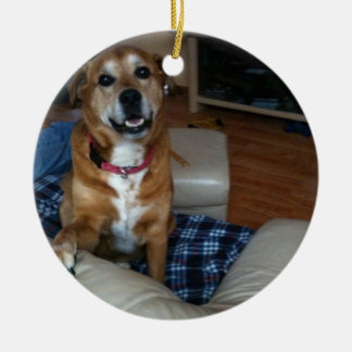 Your doggy on an ornament