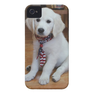 your favorite photo on an iphone4 case