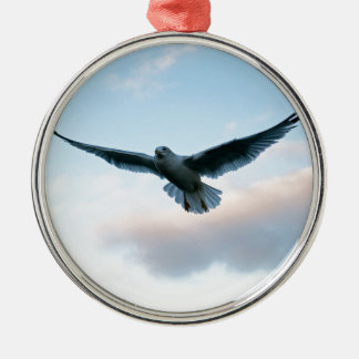 Your Free Just LIke Jonathan Livingston Silver-Colored Round Decoration