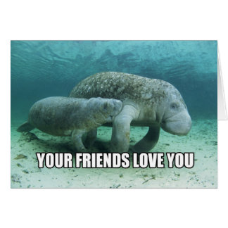 """""""Your Friends Love You"""" Calming Manatee Card"""