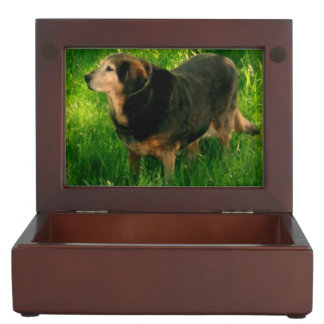 Your pet memory keepsake box add your pet photos