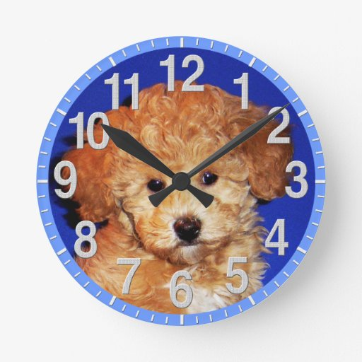 Your Pet Photo Clock or Keep Cute Puppy Clock