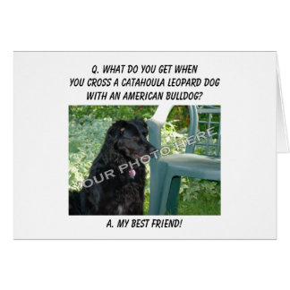 Your Photo! Best Friend Catahoula Leopard Dog Mix Greeting Cards