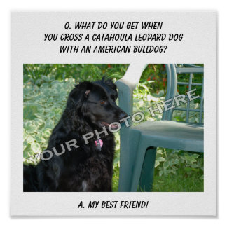 Your Photo! Best Friend Catahoula Leopard Dog Mix Print