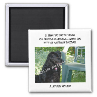 Your Photo! Best Friend Catahoula Leopard Dog Mix Square Magnet