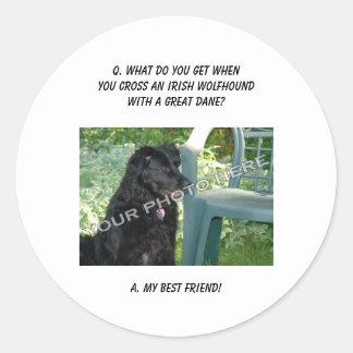 Your Photo Here! Best Friend Irish Wolfhound Mix Round Stickers