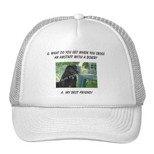 Your Photo Here! My Best Friend AmStaff Mix Mesh Hats