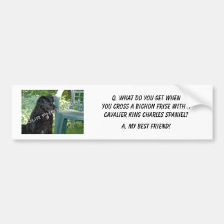 Your Photo Here! My Best Friend Bichon Frise Mix Bumper Stickers