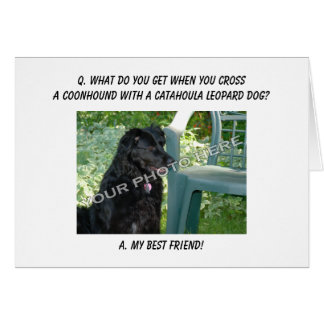 Your Photo Here! My Best Friend Coonhound Mix Greeting Card