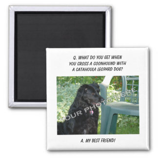 Your Photo Here! My Best Friend Coonhound Mix Square Magnet