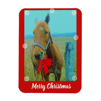 your photo here /text or Horse & Red Christmas Bow Magnet