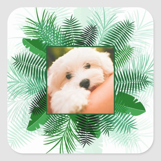 Your Photo in a Palm Leaf Frame stickers