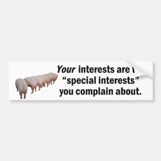 Your Special Interests Bumper Sticker