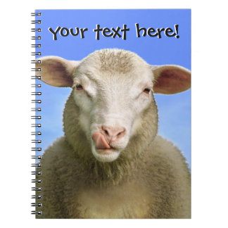 your text here! notebook