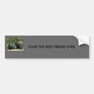 YOUR THE BEST FRIEND EVER BUMPER STICKER