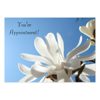 You're Appointment! cards Blue Sky White Magnolias Business Cards