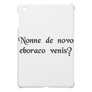 You're from New York, aren't you? iPad Mini Cover