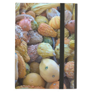 "You're ""Gourd-geous""! Case For iPad Air"