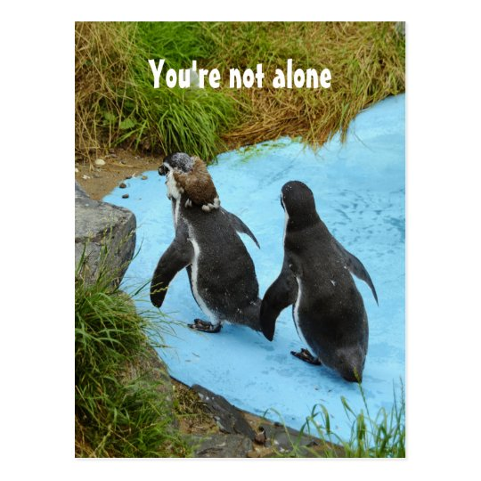 You're not alone Postcard