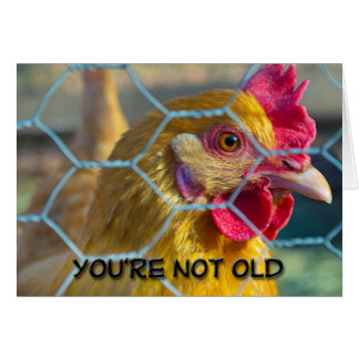 You're Not Old Card