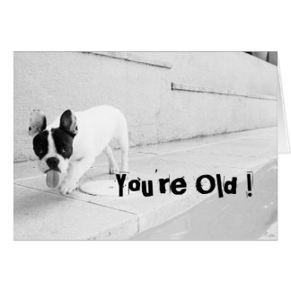 You're Old - Frenchie Birthday Card