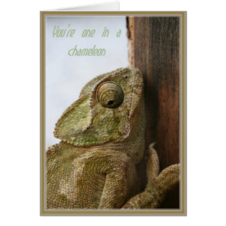 You're One In A Chameleon Card